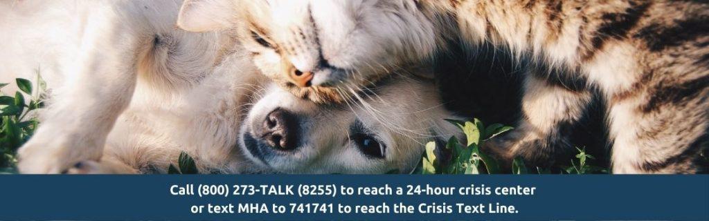 suicide awareness resources